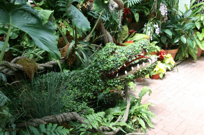 Crocodile Topiary