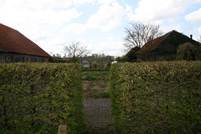 View of Oudolf Garden