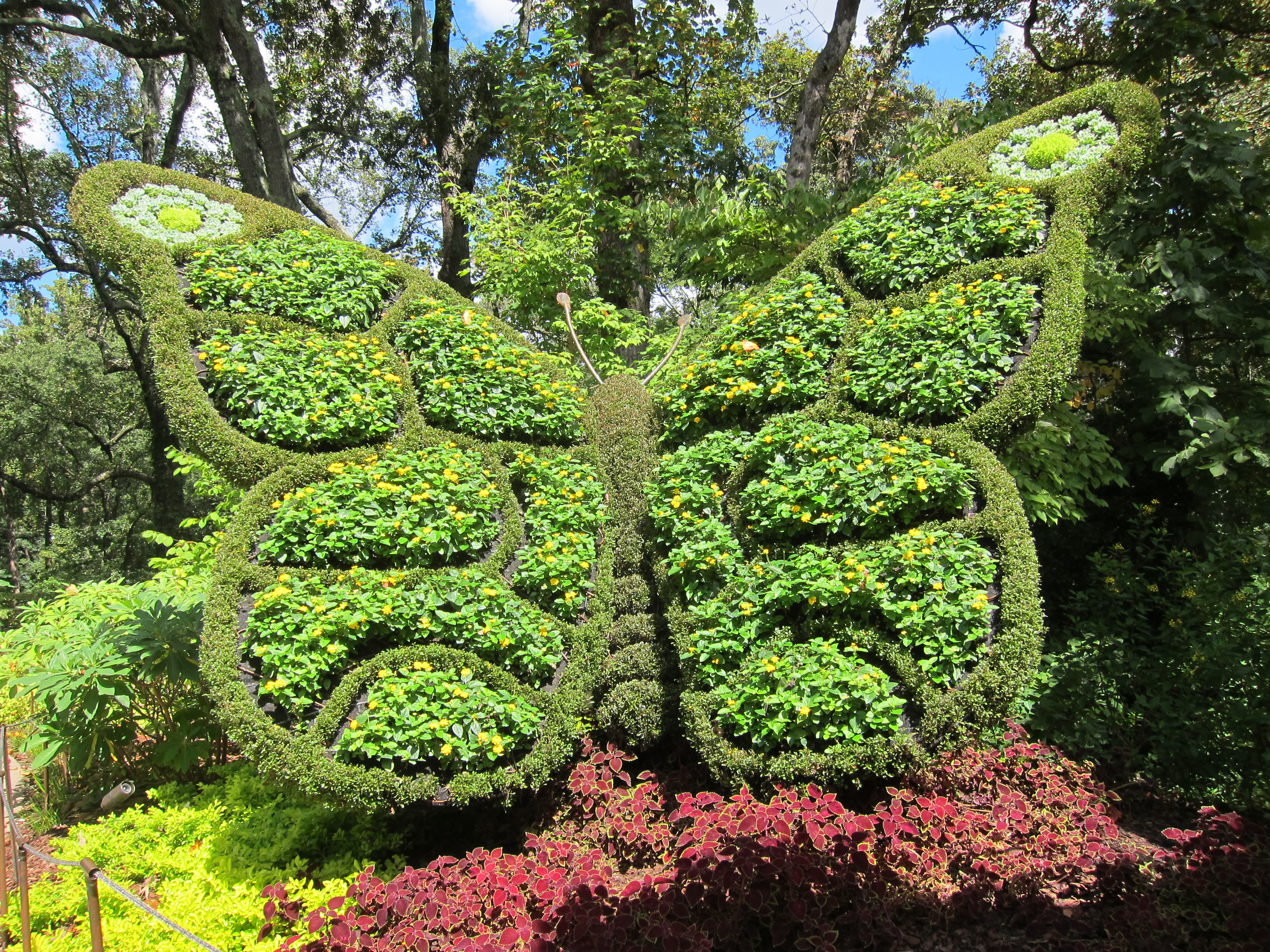 garden nursery austin texas