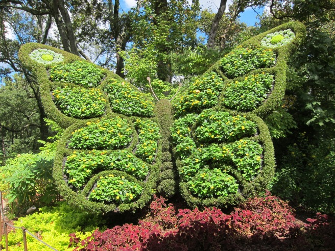 Mosaiculture Butterfly