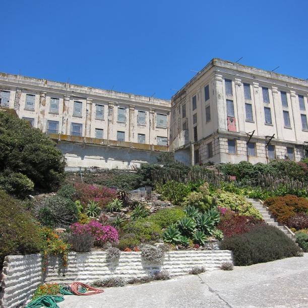 Prisoner's Garden